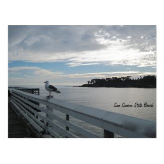Gull on Pier at San Simeon State Beach Postcard