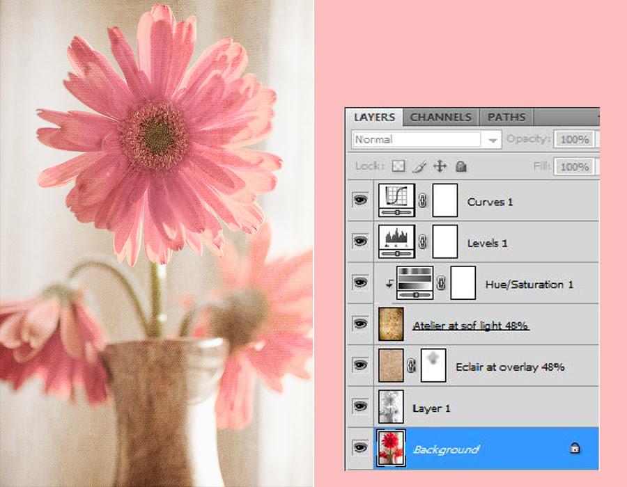 Flower Texture 3