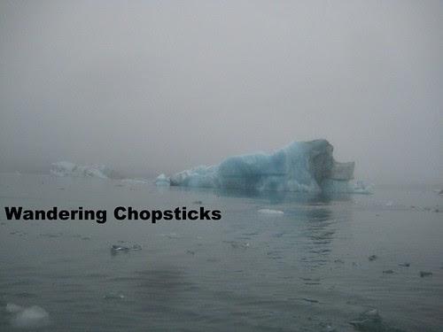 12 Jokulsarlon (Glacier Lagoon) - Iceland 15
