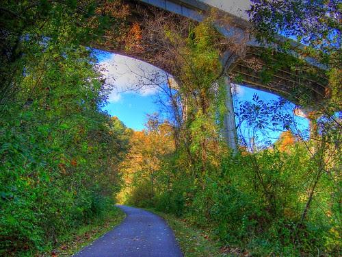 The Path Under the Bridge