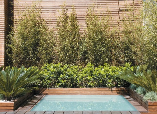 Decoracion una terraza con pileta blogydeco - Piscinas pequenas para terrazas ...