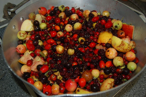 hedgerow jelly Oct 10