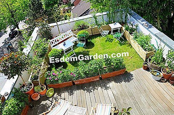 Bagaimana Cara Menanam Atap Pondok Di Kebun Saya Semua Tentang Berkebun Dan Desain Taman 2020