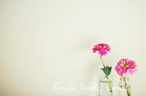 bloomsb