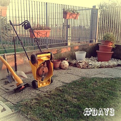 Oggi sono felice perché la mia dolce metà, di sua iniziativa,  ha tagliato l'erba, sistemato il giardino e aggiustato il dondolo! Basta poco per farmi felice! #100happydays  #day3 #profumodierbaappenatagliata #profumodiprimavera #grazieamore by Morgana209
