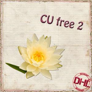 Dhl_CUfree2