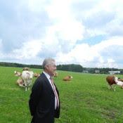 """Die Kühe auf der Weide, das gefällt ihm offensichtlich """"foto: peter lechner/hbf"""""""