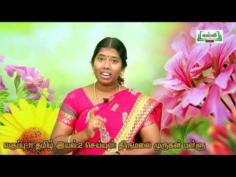 11th Tamil செய்யுள்  திருமலை முருகன் பள்ளு  அலகு 2  பகுதி 3 Kalvi TV.