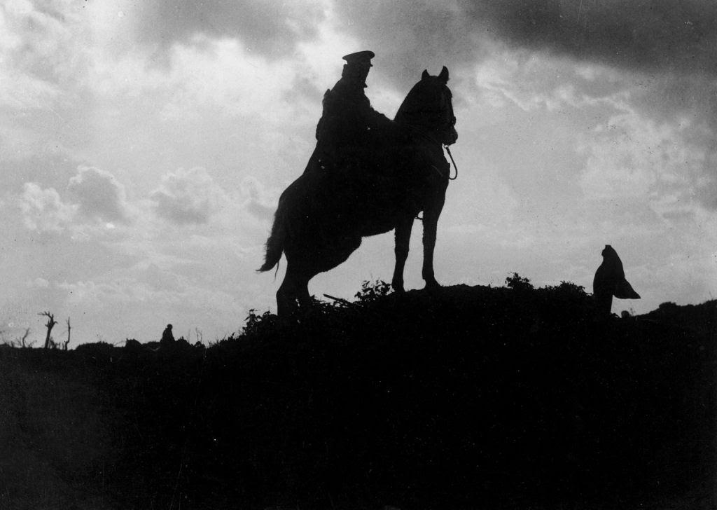 Os animais também lutaram na Primeira Guerra Mundial 45