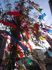 Ornaments of the Star Festival