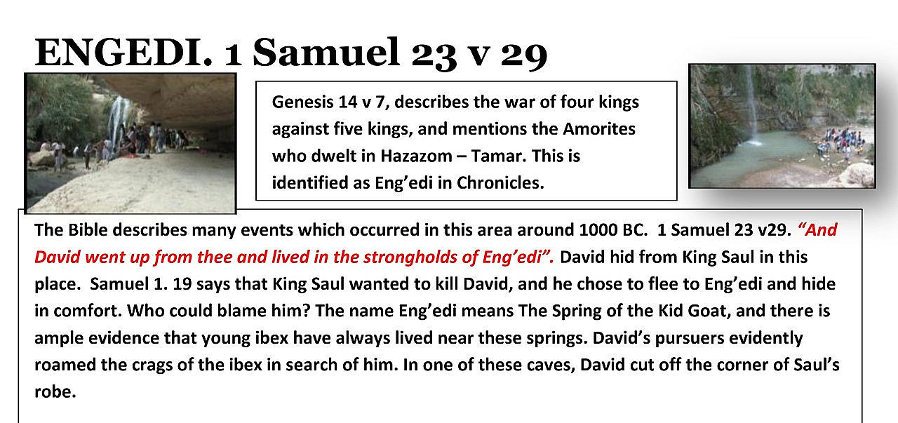 Engedi 1 Samuel 23:29. King David's pursuers evidently roamed the crags of the ibex in search of him. In one of these caves, King David cut off the corner of Saul's robe.