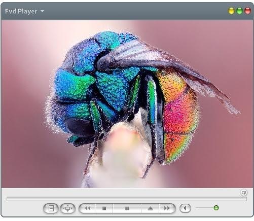 FVD Player 1.0.9 + Portable