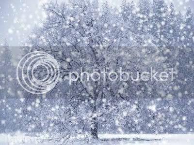 Hey, that's snow!
