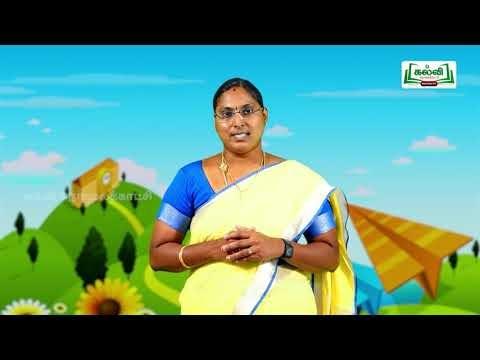 5th English Bridge Course The Magic Pencil - Part 1 & 2 Day 7 & 8 Kalvi TV