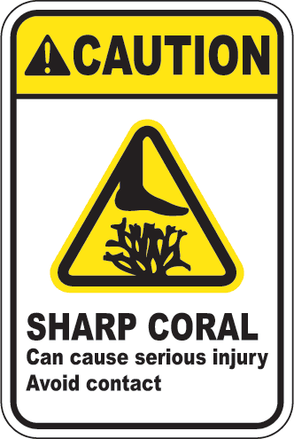 Caution: Sharp Coral