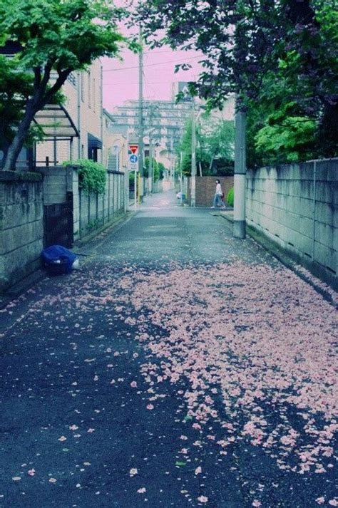 images  japanese aesthetics  pinterest