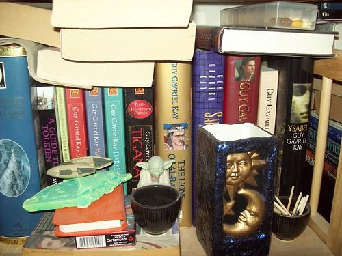 Bookshelves 22