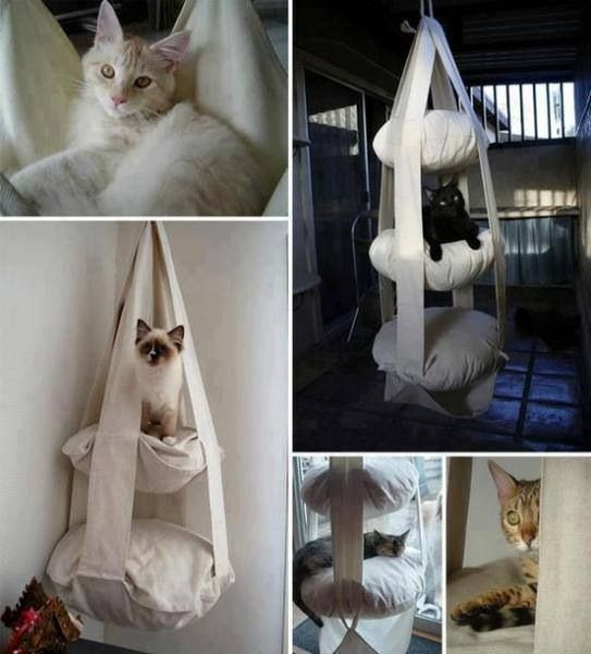 Kitty Fabric Hammock