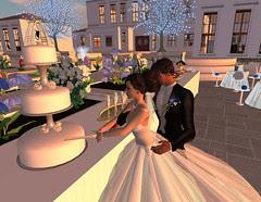Thorne-Darwin Wedding - Cake Cutting