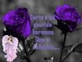 Frases De Amor Para Hermanos Fallecidos