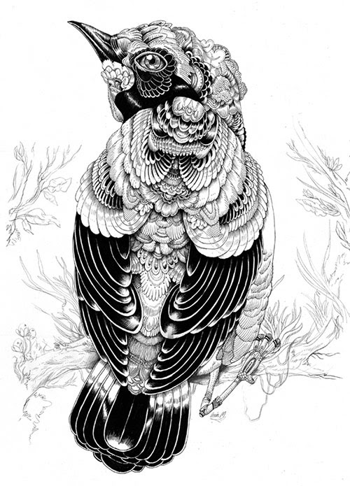 03 AnimalDrawing in Incredibly Amazing Animal Illustrations by Iain Macarthur