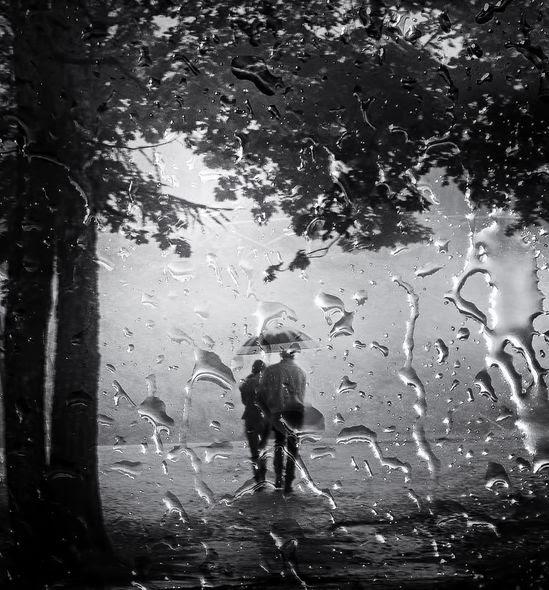 La triste soledad del amor furtivo.