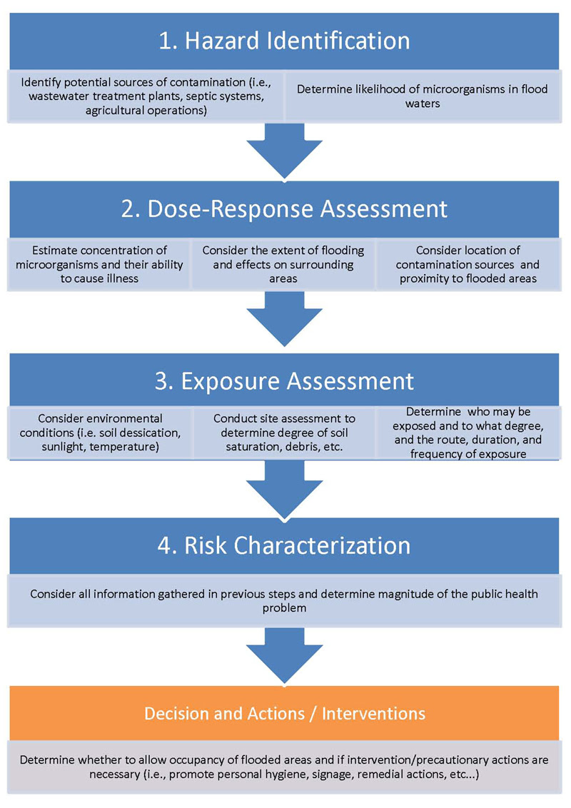 Figure 1. The Four Steps of the Risk-assessment Process