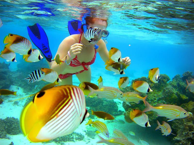 Review The Rarotongan Beach Resort and Spa