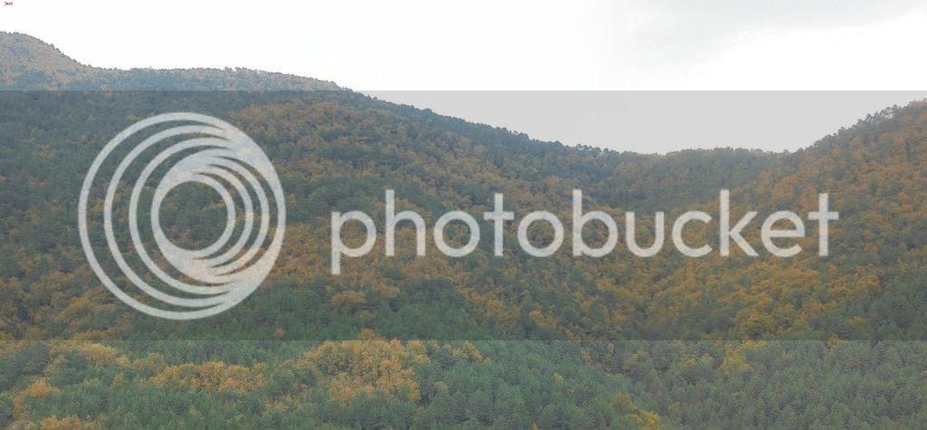 photo Group 6-NARVAL - VUELTA OSTIASKO SCALPEL 24-10-15 081_NARVAL - VUELTA OSTIASKO SCALPEL 24-10-15 083-3 images_zpsbhr8tfxc.jpg