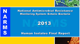 2013 NARMS Annual Report