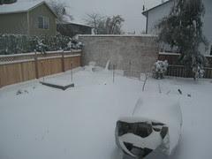 foto, snow