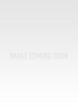 Side Slit Overlay Off the Shoulder Printed Dress