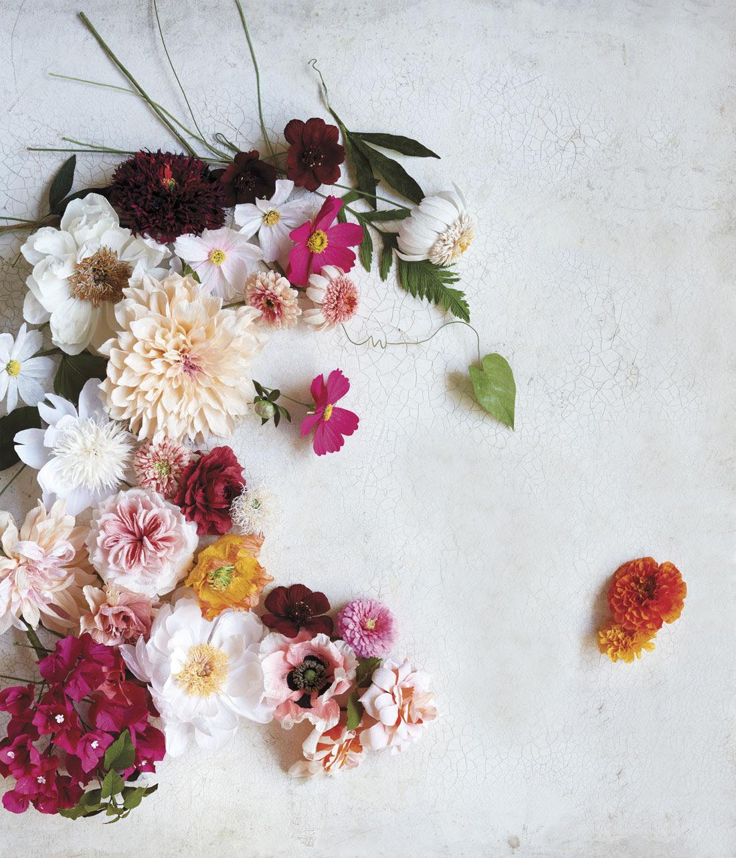 Come creare fiori di carta nel primo libro di tiffanie for Come creare i miei progetti personali