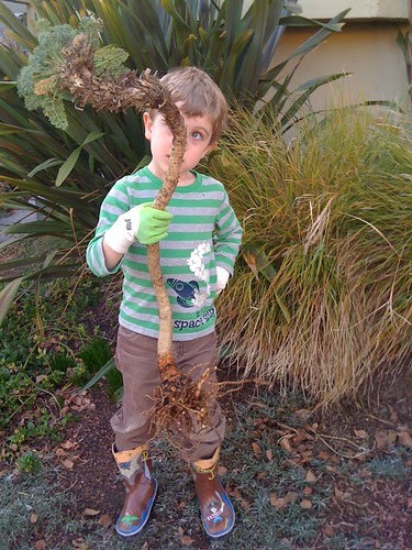 parker and the wormy plant