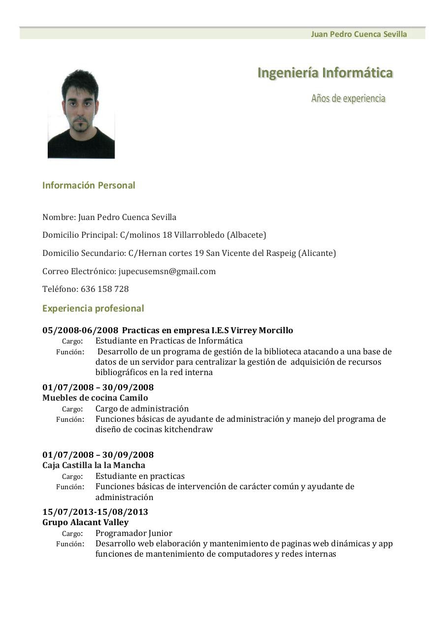 preview curriculum vitae modelo1 verde 1