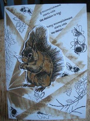 squirrel photo m_12345678DSCN2715_zps8hkuakql.jpg