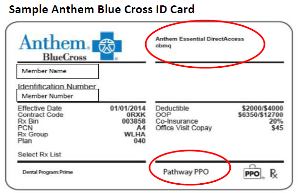 policy number on insurance card anthem blue