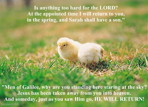 Uplifting Bible Verses Full Of Promise For The Sandwich Generation