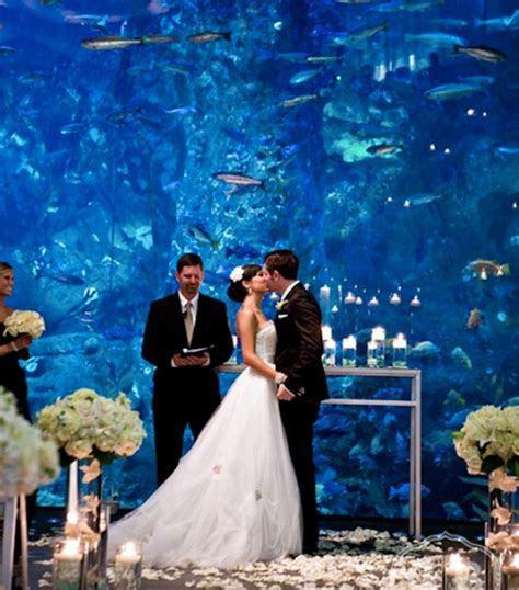 Aquarium wedding venue #GabrielCo ENTERTAINS THE KIDDOS