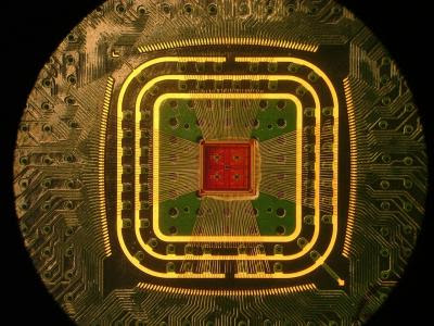 Αυτή είναι μια φωτογραφία της έθιμο τσιπ προενισχυτή πολυκαναλικό της Κολούμπια Μηχανικών ομάδας CMOS, που συνδέεται με ένα κύκλωμα με λεπτό wirebonds χρυσό.  Πιστωτικές: Κολούμπια Μηχανικών