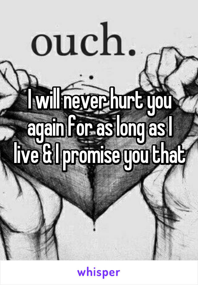 I Will Never Hurt You Again For As Long As I Live I Promise You