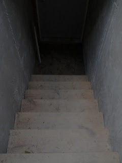 Root Cellar Steps