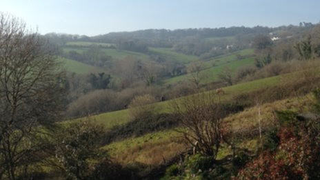 Combe Valley
