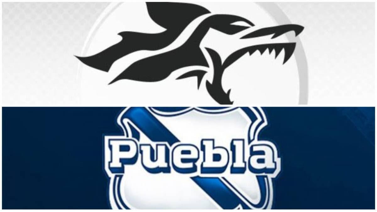 Puebla Y Lobos Buaplos Mejores Equipos Neófitos De La Lmx Femenil