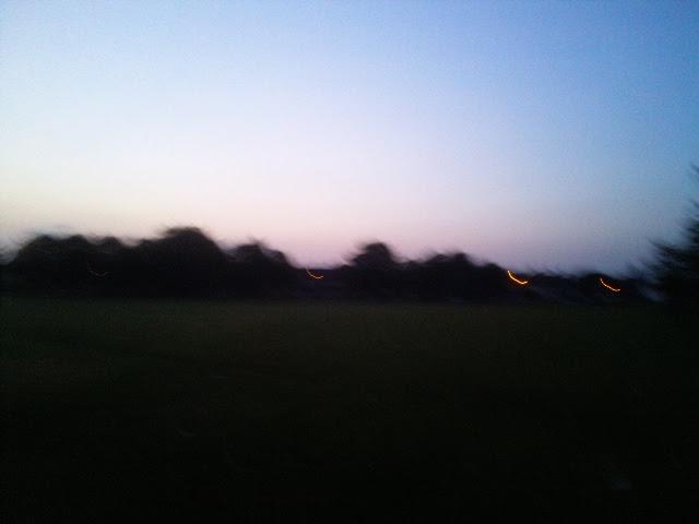 PIC_1145