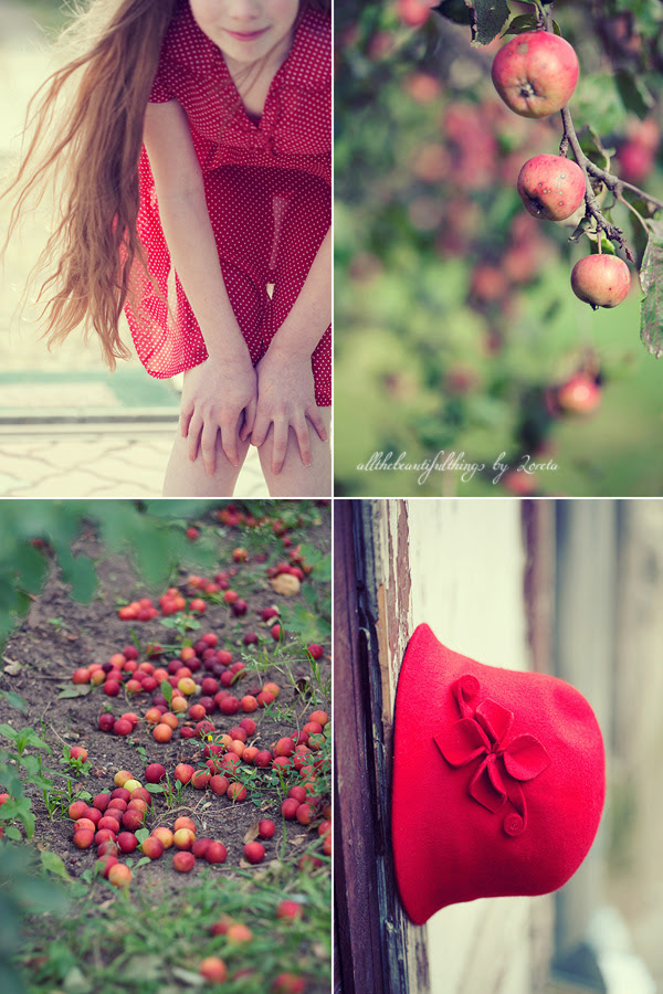 Autumn in Red