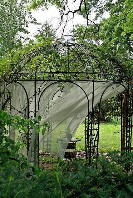 Nature S Finest Seed Gazebo Grape Arbor