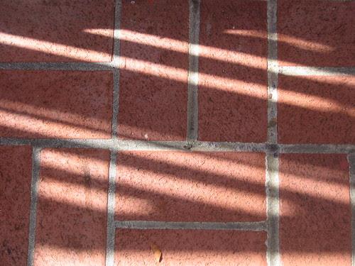 Shadow _ 8908