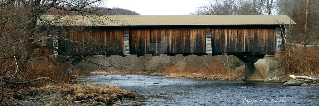 Livingston Manor Covered Bridge by peterkopher