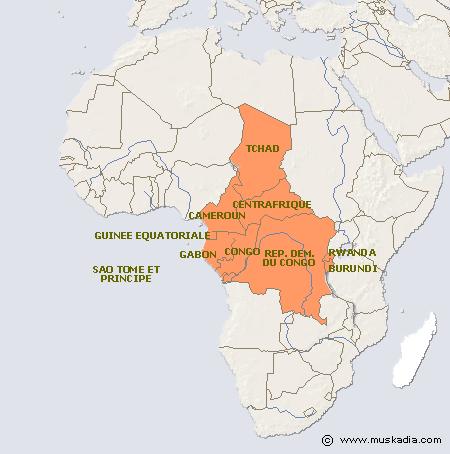 Afrique Centrale Où Se Cache La Racine Du Mal Qui Ronge Lafrique